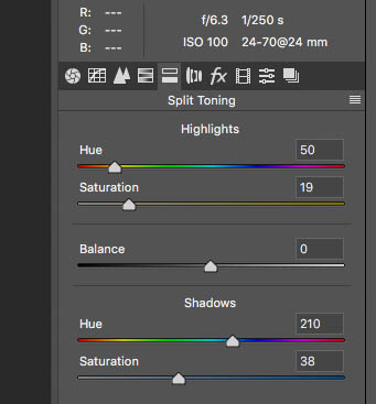 split tone sliders in raw for cyanotype colour