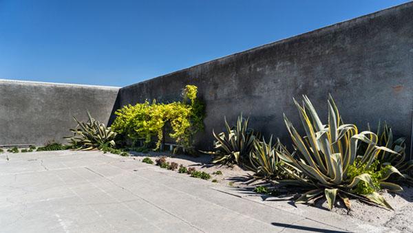 Nelson Mandela's cell garden where manuscript hidden on Robben Island