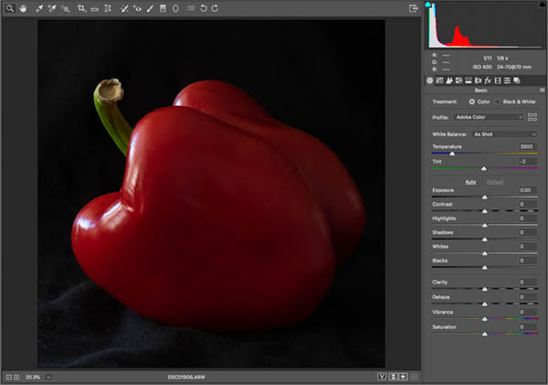 Original red pepper for how to photograph like edward weston photoshop tutorial