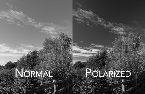 filters for black and white photography with and without polarizer