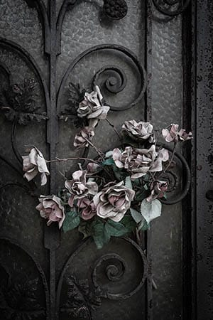 photographing Paris graveyards