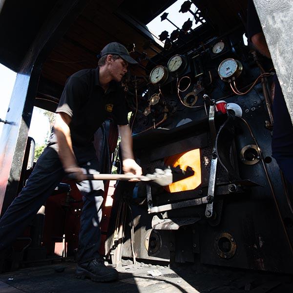 steam train south africa raw no settings 600