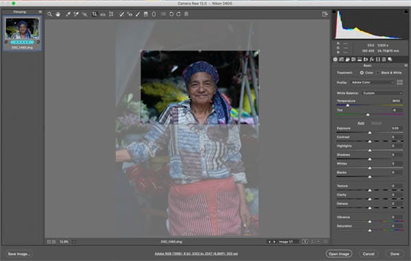 Screenshot shows cropping the McCurry style image in RAw